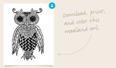 Destinations Owl Coloring PagesPrintable