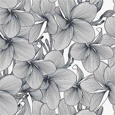 Doodle Art Drawing, Zentangle Drawings, Mandala Drawing, Zentangle Patterns, Flower Sketches, Art Sketches, Ink Pen Drawings, Motif Floral, Zen Art
