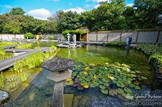 Oostende's tranquil Japanese Zen Garden
