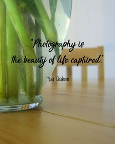 """:) Tara Chisholm - """"Photography is the beauty of life captured."""""""