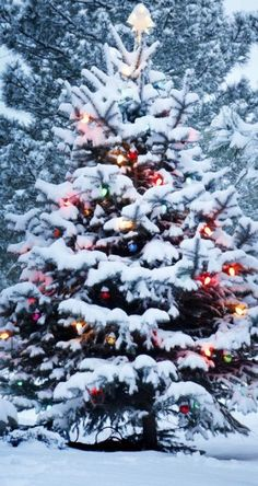 32 Ideas For Christmas Tree Wallpaper Iphone Xmas