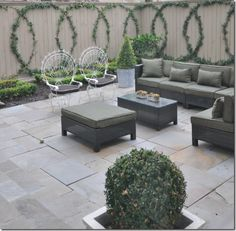 bluestone patio || furniture || espalier on fence || potted shrubs