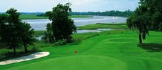 Charleston Golf Courses, with so many golf courses to choose from, Charleston has something to offer for everyone.  Whether you're a beginner looking for a wide open links style course, or a low handicapper looking for a unique challenge, you'll find it here in Charleston. Listed below you'll find a few of the best public golf courses that  Sweetgrass Plastic Surgery believes Charleston and the surrounding area have to offer.