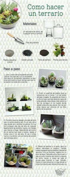 foto de la web.  Como hacer un terrario- muy interesante y facil