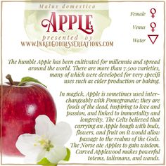 There is so much love lore surrounding Apples! Sharing this fruit with your loved one can ensure your relationship remains happy. Warm an Apple in your hands, then give it to your love. If they eat it, your love is reciprocated! // #apple #magick #love #romance #passion #immortality #longevity #wisdom #kitchenwitch #underworld Hoodoo Spells, Magick Spells, Wicca, Witchcraft, Occult Science, Kitchen Witchery, Spiritual Inspiration, Pomegranate, Spelling