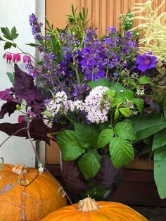 How to make your own colorful summer bouquet, summer flowers, DIY summer bouquet, countryside lifestyle Make Your Own, Make It Yourself, How To Make, Summer Flowers, Countryside, Bouquet, Colorful, Lifestyle, Garden