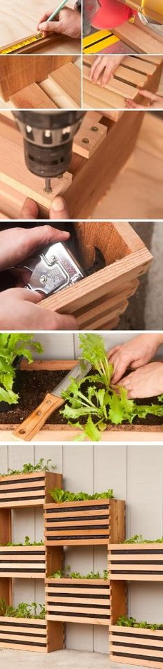 How to Make a Modern Space-Saving Vertical Vegetable Garden by garden world Vertical Vegetable Gardens, Vertical Garden Diy, Backyard Vegetable Gardens, Succulent Frame, Hanging Succulents, Modern Spaces, Space Saving, Modern Decor, Gardening Tips