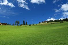 Maranza -  Trentino Alto Adige