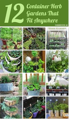12 Container Herb Gardens that fit anywhere!