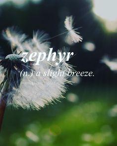 English word with Greek origin //zef-uhr//