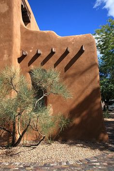 ~Santa Fe, New Mexico. An ancient tree in late day shadows stands before some old style architecture in New Mexico's capital city~