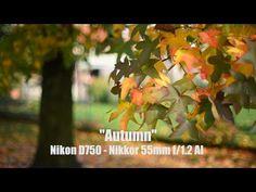 """▶ """"Autumn"""" with Nikon D750 & Nikkor 55mm f/1.2 AI - YouTube"""