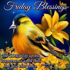 Friday Blessings! pic.twitter.com/n8FLgIKyMM