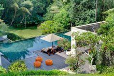 piscine moderne rectangulaire entourée d'une forêt et d'arbustes à fleurs