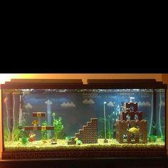 cool aquarium :)