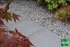 Tiles, Sidewalk, Garden, Room Tiles, Garten, Tile, Side Walkway, Lawn And Garden, Walkway