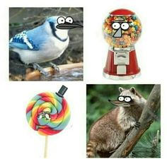 Regular show in real life, lol Funny Cartoon Characters, Cartoon Cartoon, Cartoon Crossovers, Cartoon Shows, Funny Cartoons, Funny Memes, Hilarious, Regular Show Memes, Mordecai Y Rigby