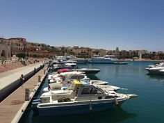 Marina Plaza Hotel Tala Bay (Akaba, Jordánia): 7 értékelés és 493 fényképek - TripAdvisor