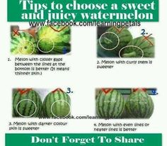 How to chose a watermelon