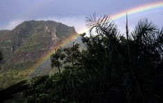 Rainbow over Manoa