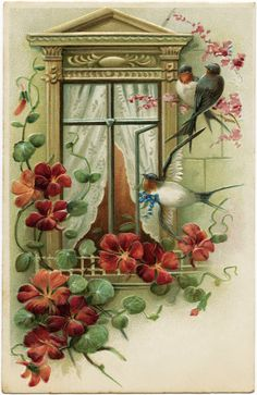 vintage postcard image, old fashioned greeting card, bird flower window graphic, antique postcard birds at window, best wishes floral postcard