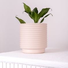 Berlin Planter X Large Parchment. Ribbed round pot perfect for your favourite plant. Indoor and outdoor use. Dimensions: 23.5cm H x 21.5 Dia. Berlin, Planter Pots, Indoor, Living Room, Interior, Home Living Room, Drawing Room, Lounge, Family Rooms