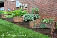 Great Looking Raised Beds On A Slope. Notice The Drainage Holes- Too.-   Everything you need to know about Gardening