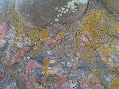 Detalj steinmur