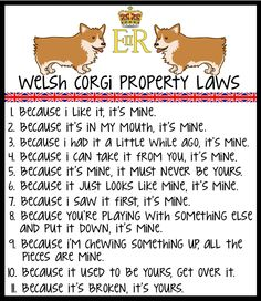 Corgi laws