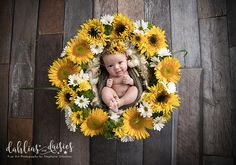 ideas baby photoshoot sunflower for 2019 Fall Newborn Pictures, Baby Pictures, Baby Photos, Infant Photos, Newborn Pics, Newborn Photography Props, Newborn Photographer, Photography Ideas, Sibling Photography