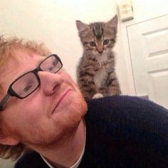 Ed Sheeran – Celebridades que adoran a sus gatos Celebrities With Cats, Celebs, Crazy Cat Lady, Crazy Cats, Edward Christopher Sheeran, Taylor Swift Cat, National Cat Day, Son Chat, Cat People