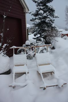 Ruby of Crested Butte  Kick Sleds and Bikes covered in snow