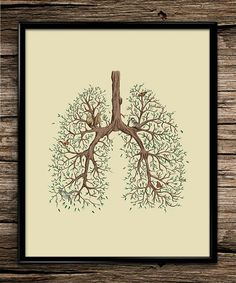 Nature Lung Anatomy | Science Prints | Anatomy Print | Office Decor | Home Decor | Printable Wall Art | 8x10 | Instant Download |