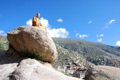 Tibet, monk