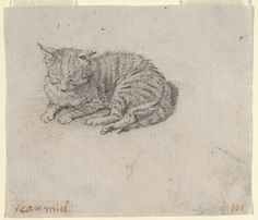¤ Study of a Sleeping Cat, mid 17th century Attributed to Jan Miel (Flemish, 1599–1664).