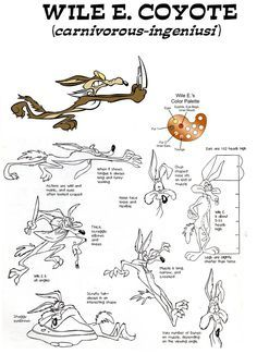 Wile E. Coyote Model Sheet by guibor