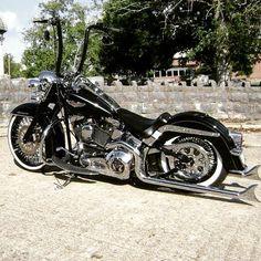 Softy #harleydavidson #motorcycles
