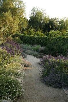 51 Best Favorite Plants Dustin Maxam Rla Images