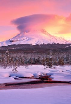 USA - Oregon - Mount Hood Meadow by Jarrod Castaing
