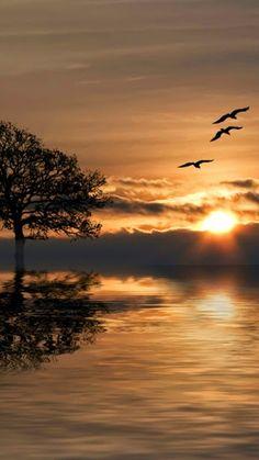 Awesome Sunset By Djenna Choukri