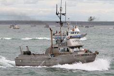 commercial+fishing | Commercial Fishing Bristol Bay, Alaska