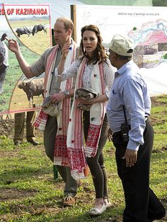 Prince William and Princess Kate Take on Indian Wilderness! Royal Couple See Wild Elephants, Baby Rhinos and More on Safari| The Royals, Kate Middleton, Prince William