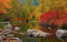 Nason Creek Stevens Pass