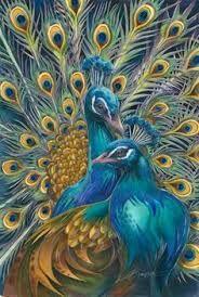Resultado de imagen de pinturas de pavo real