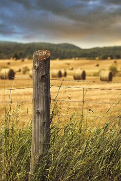 Fence in tall grass with bales of hay in background by Sandra Cunningham - Stocksy United Landscape Photography, Nature Photography, Country Fences, Country Roads, Country Backgrounds, Western Photography, Summer Scenes, Stock Imagery, Old Fences