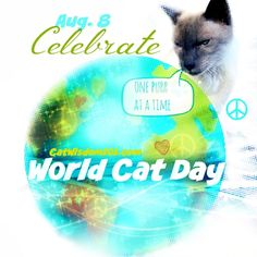 World Cat Day- International