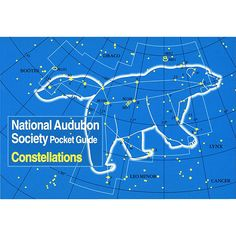 Pocket Guide to Constellations of the Northern Skies | Exploration Field Guide | Outdoor Play Ideas