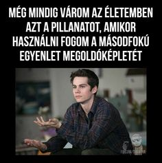 Mind Trick Questions, Really Funny, Funny Cute, Fun Fair, Real Friends, Dylan O, Funny Moments, Funny Photos, Best Quotes