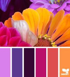 The colors of the future would be able fun and bright colors of the fall but would also focus on the color purple because it is fun