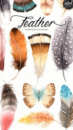 The set of high quality hand painted watercolor feather and elements images in bright and fresh color palette. Included 3 beautiful wreaths and bouquet Feather Drawing, Watercolor Feather, Feather Painting, Butterfly Watercolor, Watercolor Paintings, Watercolours, Painting Art, Illustration Simple, Graphic Design Illustration